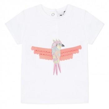 Tee Shirt Perroquet